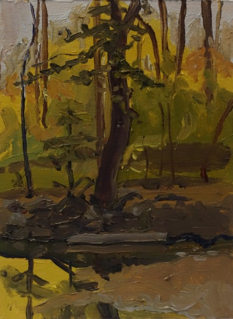 sligo-creek-autumn-foliage_oil-on-paper_4-5-x-6