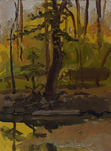 sligo-creek-autumn-foliage_oil-on-paper_4-5-x-6