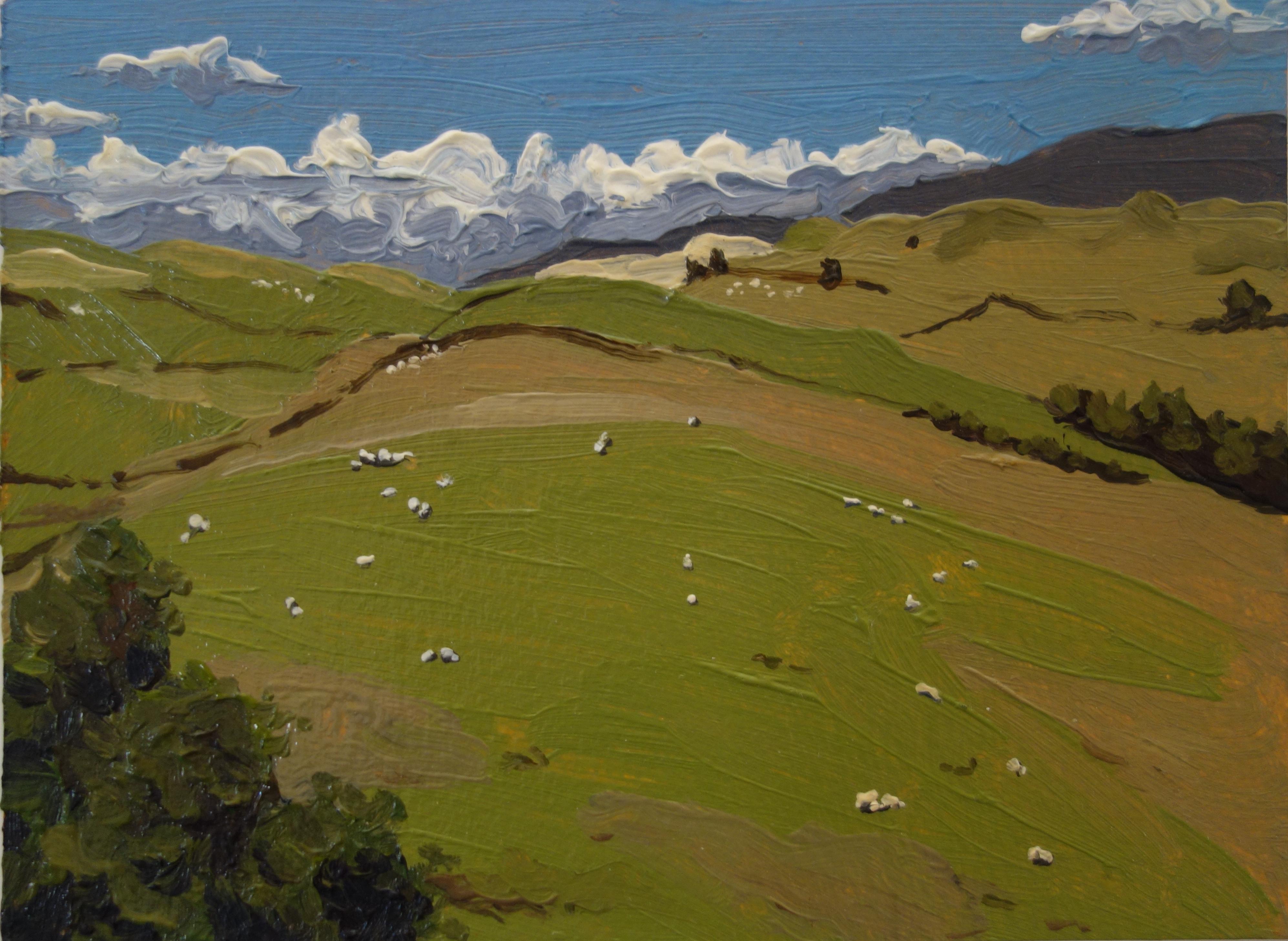 Lake District Pasture