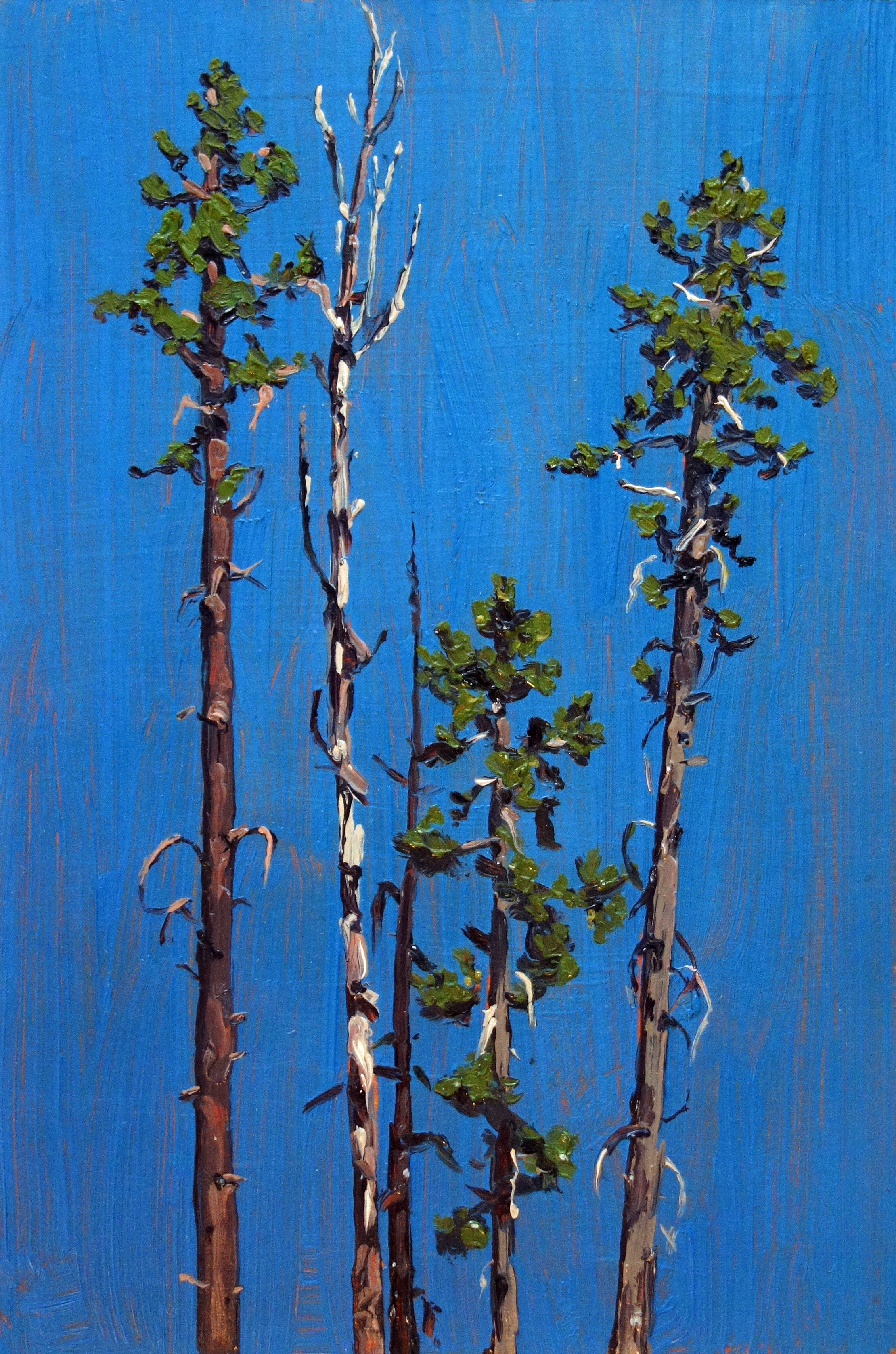 Aspens_and_Blue_Sky_Jackson_Hole_Wyoming_Oil_on_Paper_Painting_6x9_Maud_Taber_Thomas_Washington_DC_Georgetown